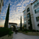 The Terraces